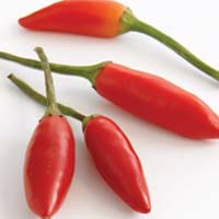 types-of-chillies-4